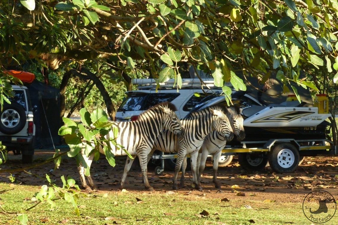 Umalazi Reserve, globe trotter, enfant et camping-car