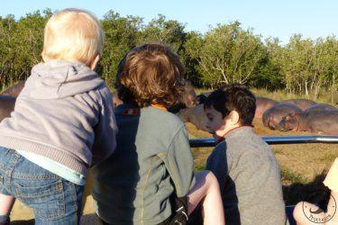 Voyage en famille, Afrique du sud, Sainte-Lucie